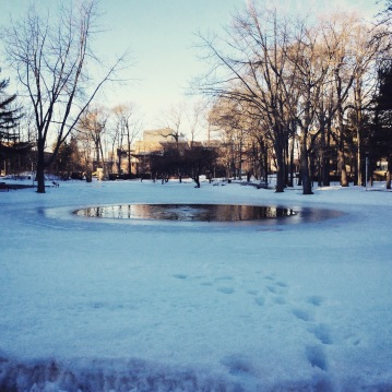 According to computer science major Edmundo Welker, winter ice skating on Roth Pond is NOT advised.