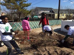 Brandon Mathurin and Midwood's High School's 4-H club on a beautification project